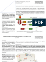 Resumenes (1).pptx MODIFICADO