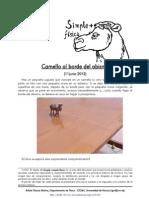 160- Camello Al Borde Del Abismo