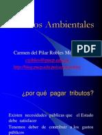 Tributos Ambientales 21.07.2010 Carmen Robles