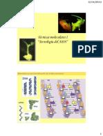 Tecnicas Moleculares I 2013