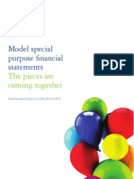 AU 30 June 2013 Model Special Purpose Financial Statements