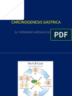 carcinogenesis gastrica