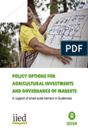 Policy Options for Agricultural Investments and Governance of Markets: In support of small-scale farmers in Guatemala