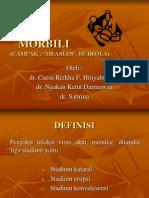 MORBILI Portofolio