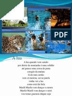 Literatura Matogrossense - Mini Curso 2013