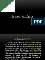 Trabalho - Ácidos Nucleicos