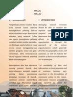 Peluang Dan Potensi Investasi Provinsi Maluku 2010