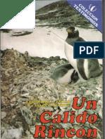 Un Calido Rincon - Grillo - Mendive -1987