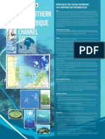 OPPORTUNITIES FOR STRATEGIC PARTNERSHIPS FOR A PROSPEROUS WESTERN INDIAN OCEAN (BIRD LIFE, BLUE VENTURES, CONSERVATION INTERNATIONAL, CORDIO EAST AFRICA, IUCN, WCS, WWF)