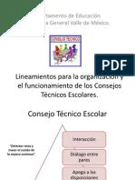 Lineamientos Yy AcuerdosCTE