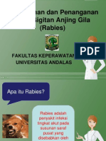 Ppt Rabies