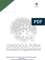 Informe Final Estudio de Opinión Pública Provincia de Osorno I