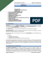 3-Capitulo 3-Organización.pdf1.pdf1.pdf1