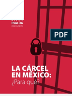 La cárcel en México ¿Para qué?