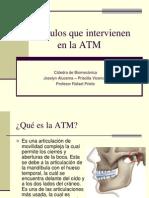 Músculos que intervienen en la ATM full