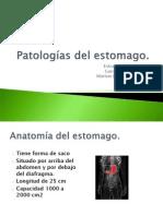 Patologias Del Estomago PDF