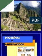 2 CLASE - PROTEÍNAS Y AMINOACIDOS