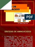 3 CLASE - PROTEÍNAS Y AMINOACIDOS
