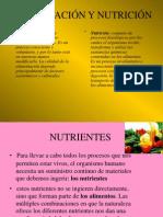 alimentacion y nutricion.pptx
