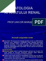 Curs 7 - Patologia Urinara