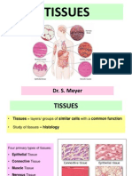 Tissues Lect Apd