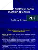 Curs 8 - Patologia AGMF Modificat
