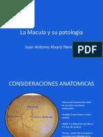 Macula y Su Patologia