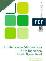 Fundamentos Matemáticos de la Ingenieria I, Algebra Lineal