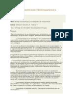 Libro Abordaje Neuropsicologico y Neuropsiquiatrico de La Esquizofrenia
