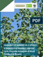 Vulnérabilité des Mangroves de la Côte Ouest de Madagascar au Changement Climatique