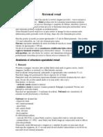 Anatomia Si Fiziologia Sistemului Renal
