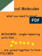 Biological Moleculescbh