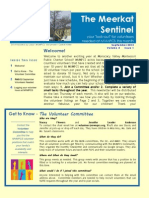 Meerkat Sentinel 2-1