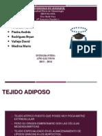 Tejido Adiposo y Cartilaginoso