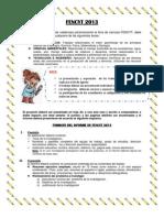 Formato de Fencyt 2013
