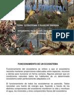 Exposicion Ecosistema y Energia