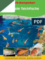 11106 RG Gesunde Teichfische D