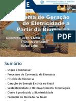 Geração de Energia Elétrica através da Biomassa