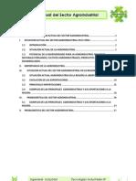 Analisis de La Situacion Actual Del Sector Agroindustrial[1]