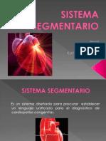Sistema Segmentario (1)