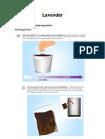 Plants Information