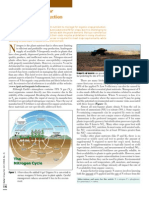 2008. Nitrogen Sources for Organic Crop Production