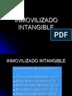Presentacion Intangibles