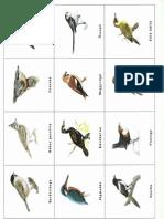 itt telelő madarak_memória0002