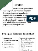 STRESS  -  Hudson de Araújo Couto  -  apresentação PowerPoint