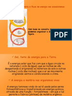 1472140-Ciclo-de-Materia-e-Fluxo-de-Energia