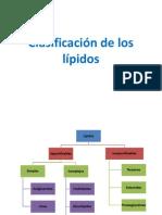 Clasificación de los lípidos Chacorete