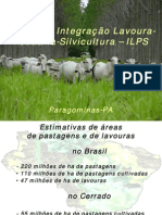 Pal08 iLPS Programa
