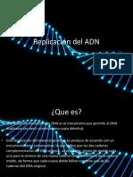 rep adn2.pptx