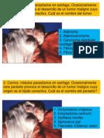 2° Examen Práctica Pato Sistémica